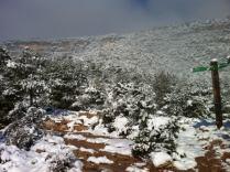 La Mussara Nevada 230213 (13)_01